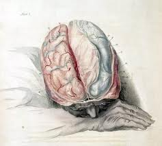Mind Despair